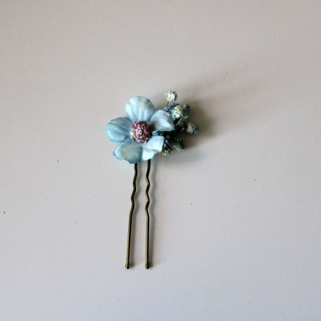 Pack of 6 daisies and paniculata: blue
